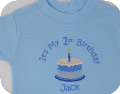 Personalised It's My 1st / first Birthday T-shirt and bib set - choice of colour